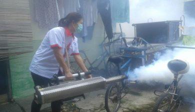 jasa fogging depok