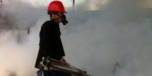 jasa fogging di duren sawit