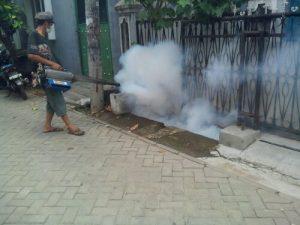 jasa fogging di jatinegara jakarta timur