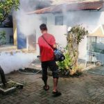 Jasa Fogging di Senen Jakarta Pusat