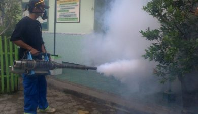 jasa fogging di taman sari jakarta barat